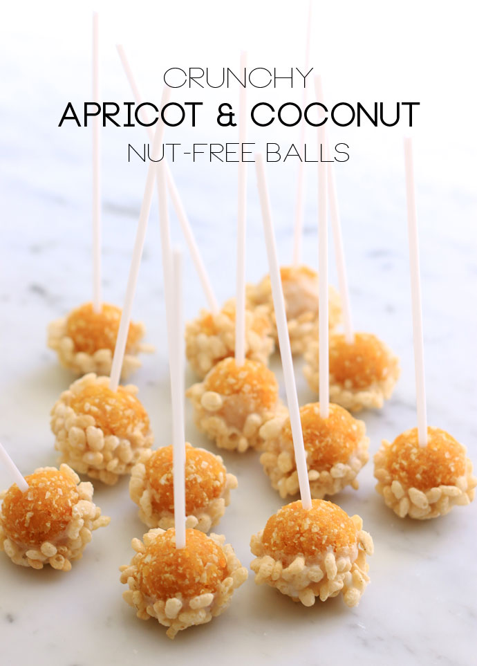 Apricot & coconut nut free treat ball