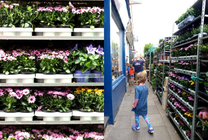 A Day out at Columbia rd FLower Market London - Travel Guide MyPoppet.com.au