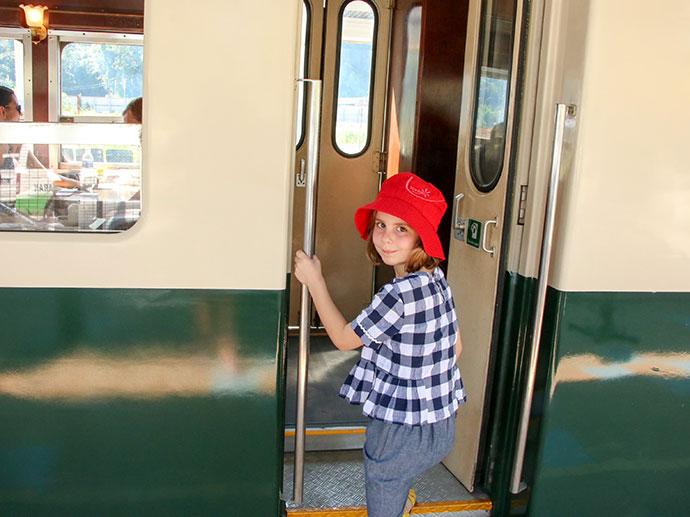 Steam Train - North Borneo Railway