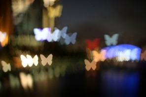 bokeh photography with butterfliesmypoppet.com.au