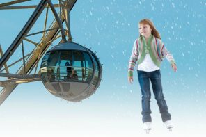 WIN one of 3 Skate & Fly Experiences for the Whole Family (CLOSED)