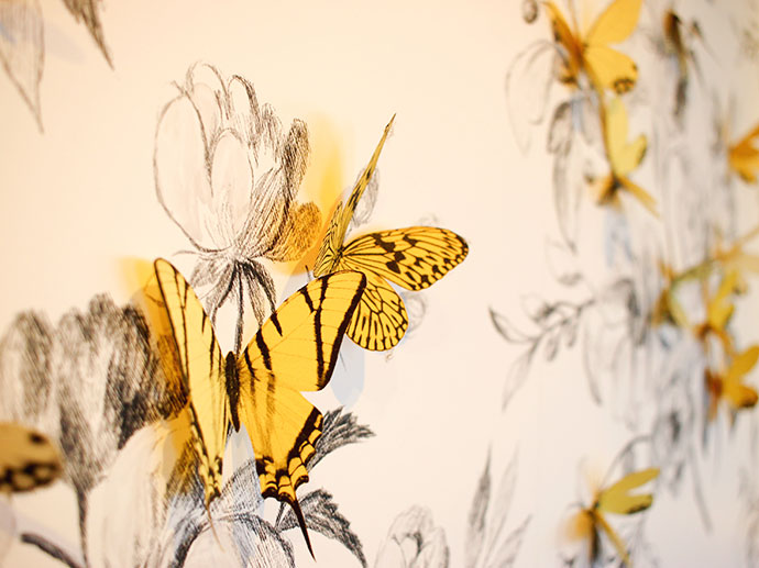 Butterfly wallpaper Time & Tide Tea rooms - Port Fairy Victoria - High tea review -mypoppet.com.au