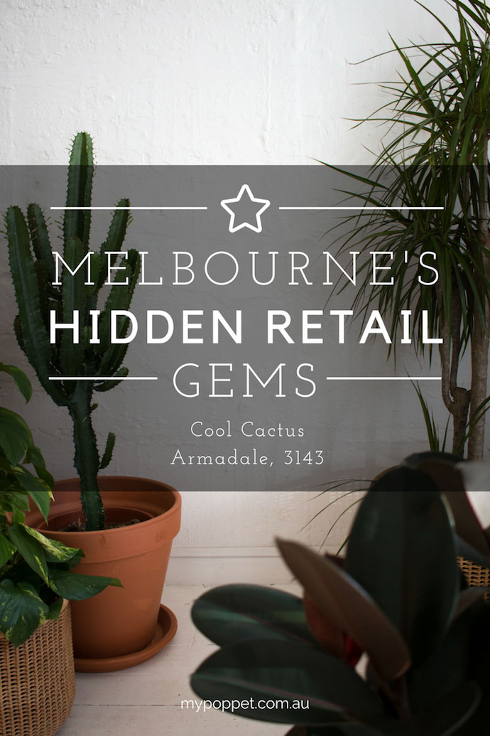 Cool Cactus - Melbourne Hidden Retail Gems - mypoppet.com.au