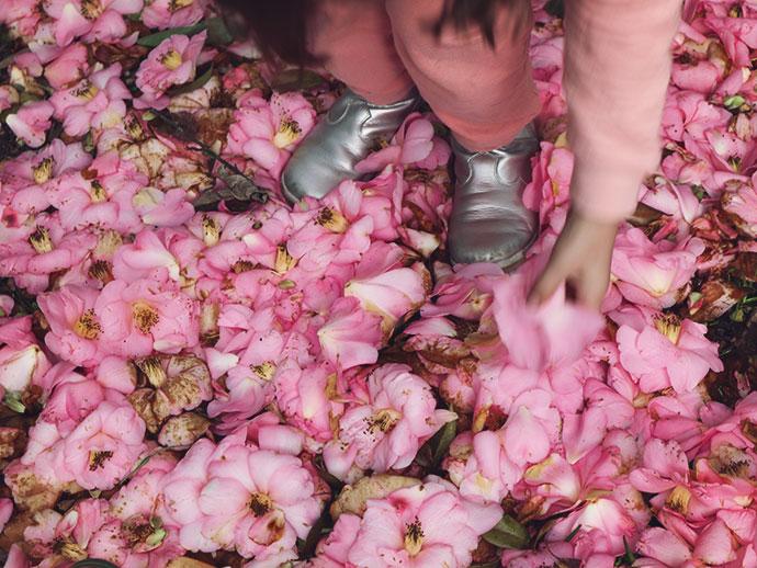 warburton motel spring garden - mypoppet.com.au