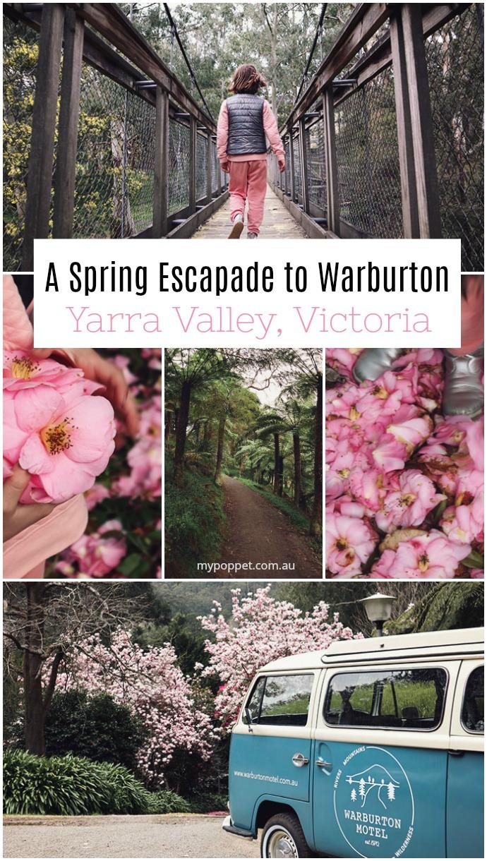Yarra Valley Warburton travel guide - mypoppet,com.au