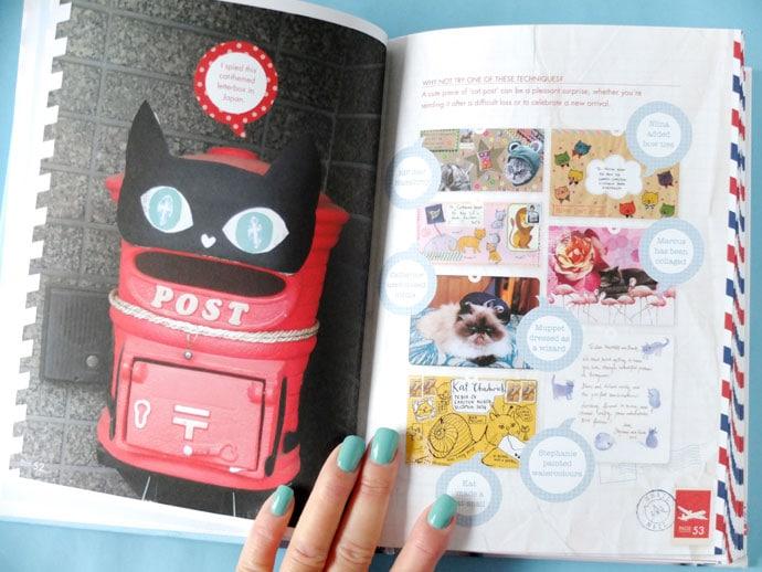 cat letterbox