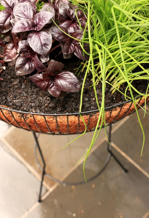 Upcycled planter herb garden
