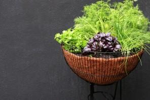 DIY upcycled mid century planter herb garden