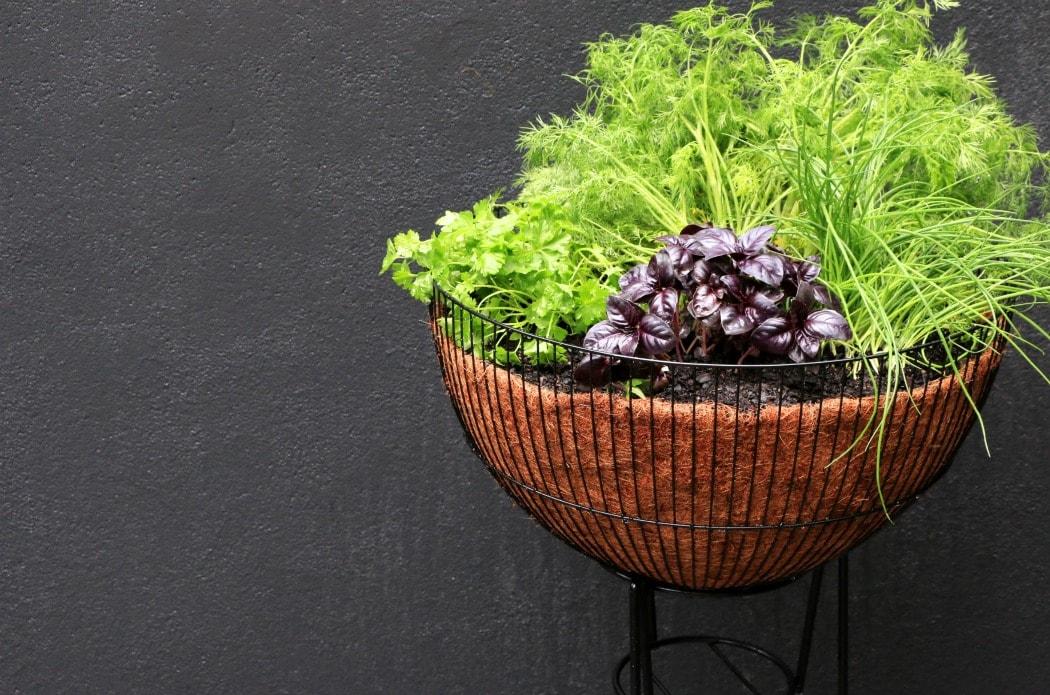 Mid Century Modern Planter Ideas: Upcycle Style: DIY Mid Century Planter