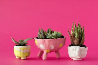 How to make mini succulent planters