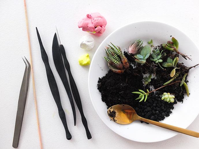 Mini succulent planter supplies