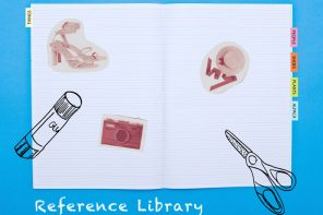 The Daily Drawing Project – Making a Reference Library