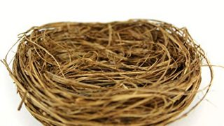 Touch of Nature Wild Grass Nest