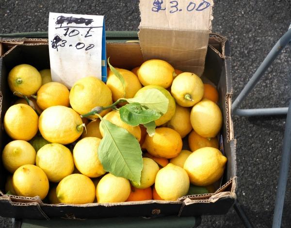 lemons mypoppet.com.au