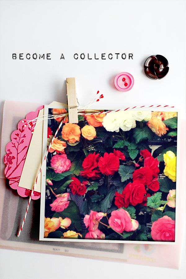 roses and buttons