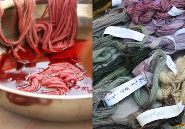 botanical dyeing