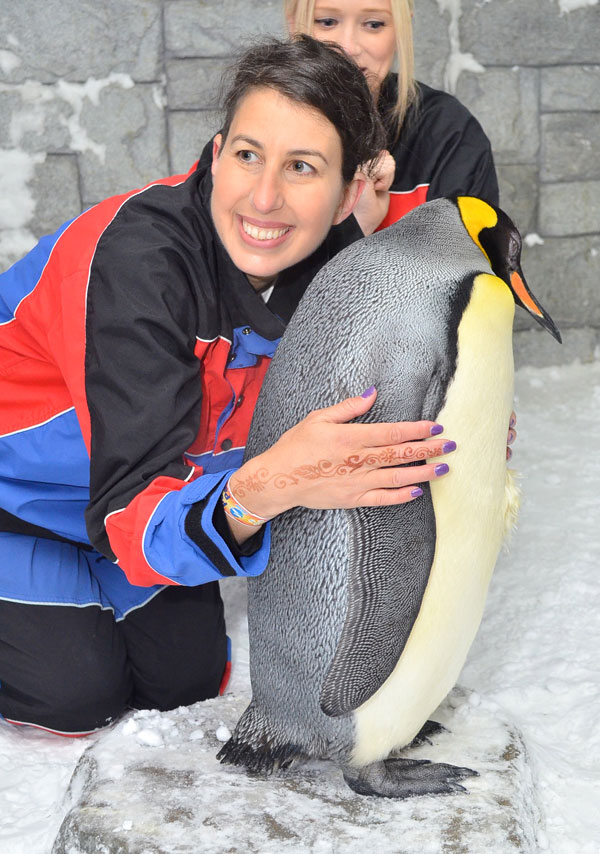 King Penguin encounter at Ski Dubai